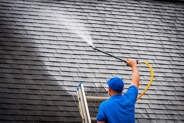Roof Soft Washing